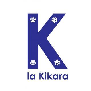 """Tienda de animales """"La Kikara""""Proyecto de apertura e instalaciones de Clínica veterinaria en Cruce de Arinaga."""